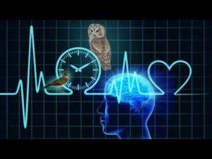 Биоритмы и зависимость